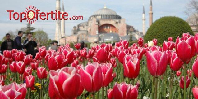 4-дневена екскурзия за Фестивала на Лалето в Истанбул + 2 нощувки със закуски, транспорт, водач, посещение на Аташехир с Watergarden iStanbul, Мол Forum, Виапорт Венеция и небостъргача Сапфир за 148 лв.