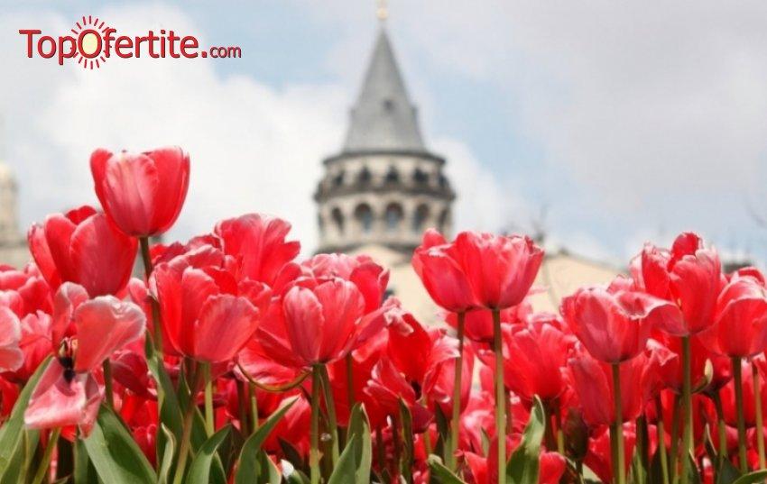 4-дневна екскурзия за Фестивал на лалето в Истанбул + 2 нощувки в 5-звезден хотел със закуски, СПА пакет, транспорт, обиколка на Истанбул, екскурзовод на български език и възможност за посещение на Istanbul Aquarium на цени от 280 лв.