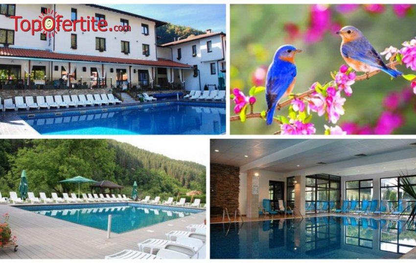 Майски празници в Хотел Фея, село Чифлик! 3 нощувки + закуски, вечери, външен сезонен басейн, вътрешен минерален басейн и СПА пакет на цени от 187,50 лв. на човек